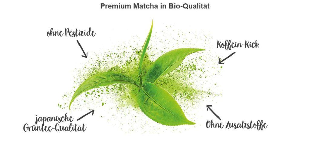 Matcha-Tee Benefits